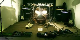 Wild Shades (Wild Shades)