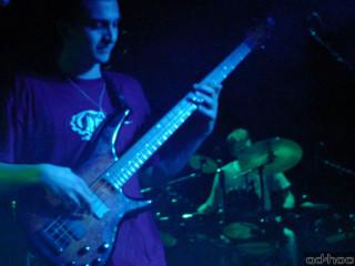 Live 7 (Otopodoragi)