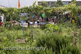 La Plage Arrière (jardin partagé)