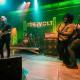 Freevolt@Gones'n'Live Festival 2014, Chaponost, Lyon